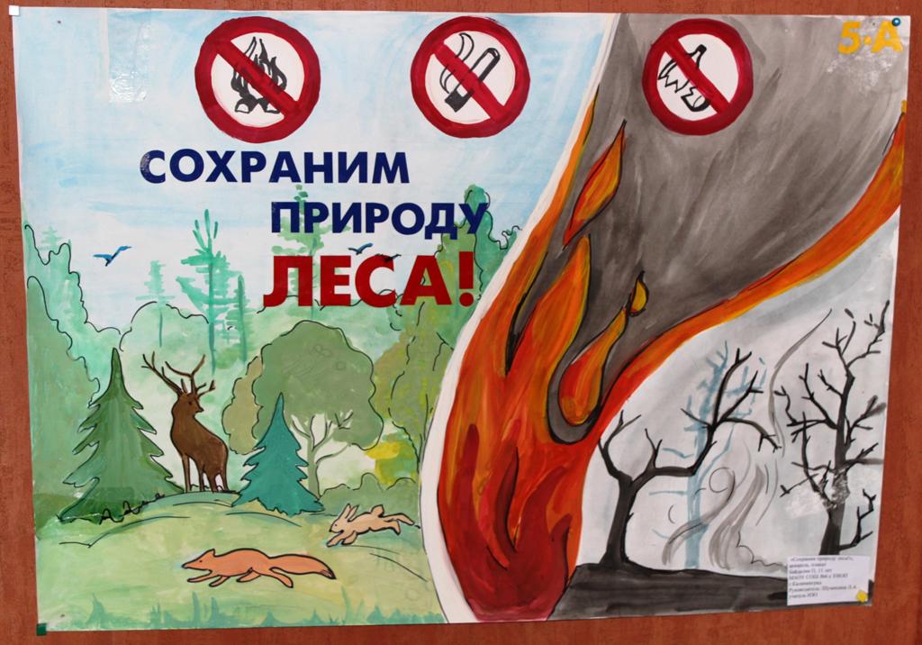 "Заповедной природе - надежную защиту!"": www.park-kosa.ru/cn_novosti/publikatsii/?ELEMENT_ID=16982"